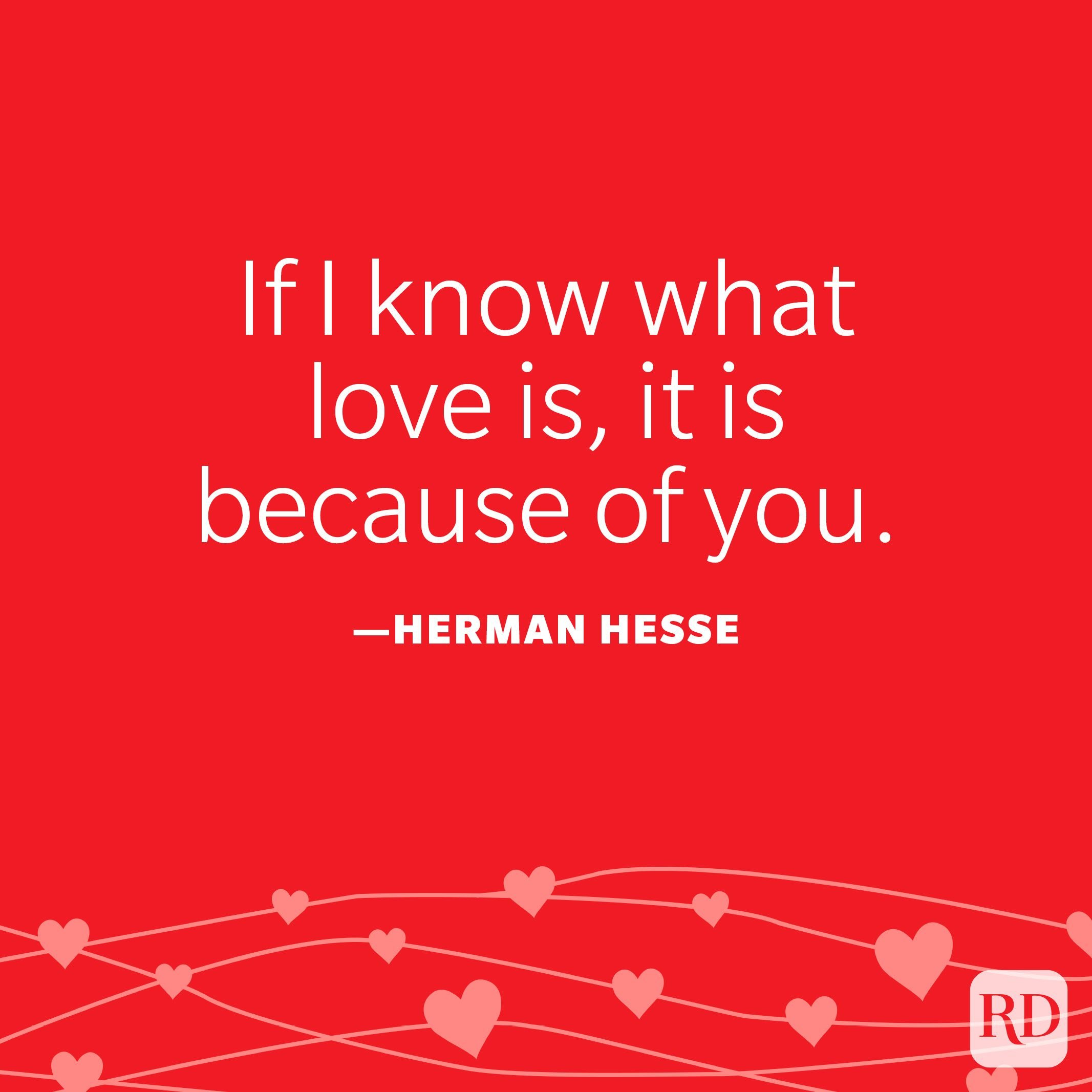 """""""If I know what love is, it is because of you."""" —Herman Hesse"""