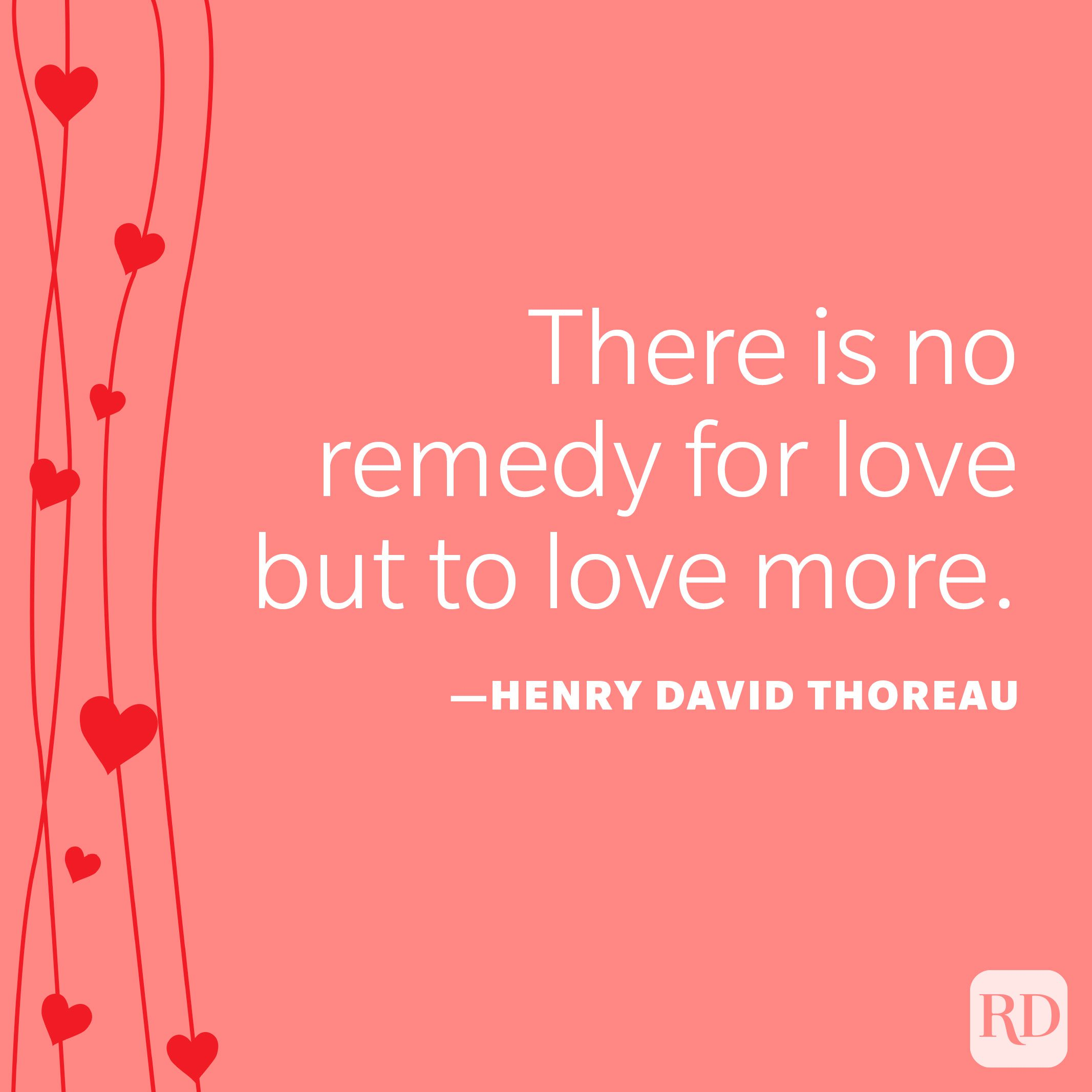 """""""There is no remedy for love but to love more."""" —Henry David Thoreau"""