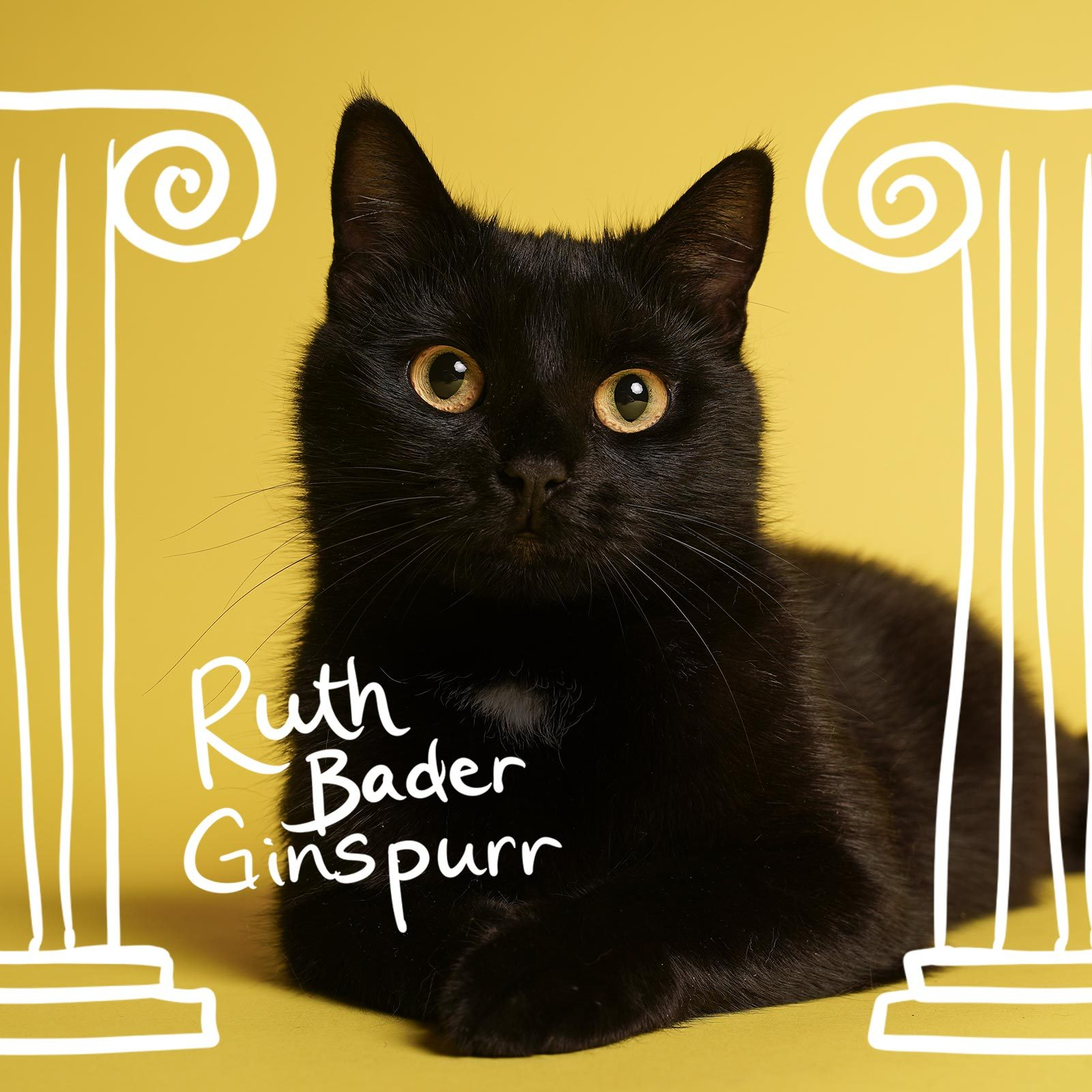 Cat between two roman columns named Ruth Bader Ginspurr