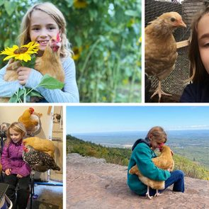 collage of Sophie and chickens: holding on at a sunflower field; selfie with a chicken; six sit around her while she's on zoom; sophie holds one close at the top of a hiking trail