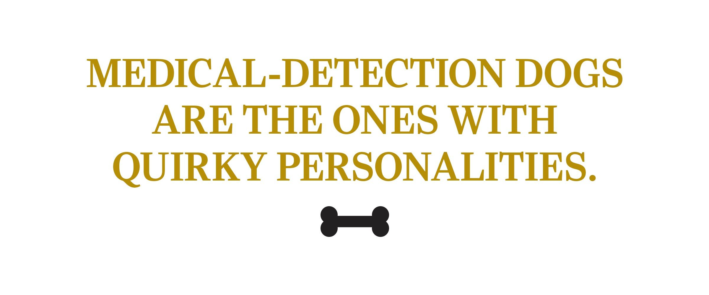 text: Medical-detection dogs are the ones with quirky personalities.