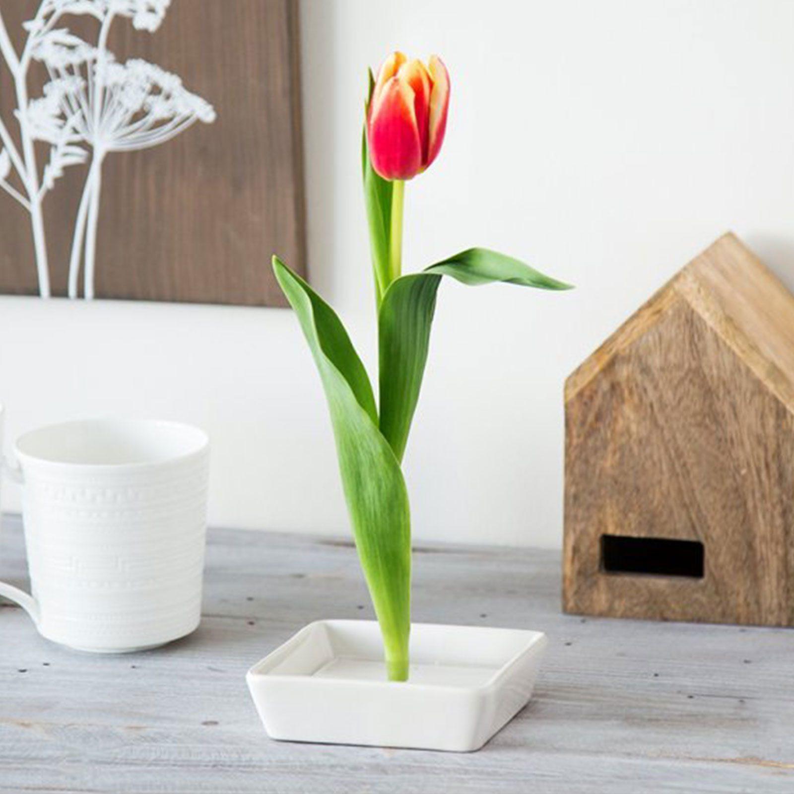 For desk decorators: Florida Vase Floating Flower Pin Vase