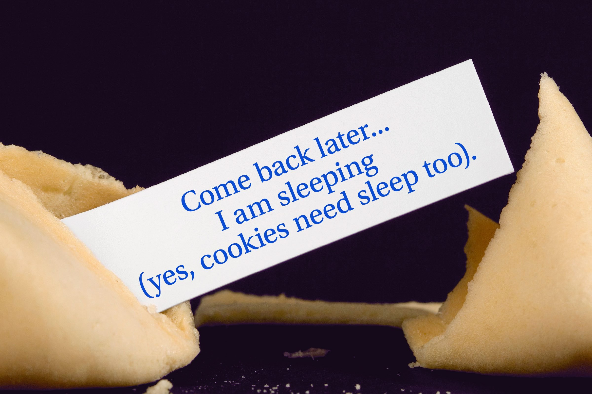 For image: Come back later...I am sleeping (yes, cookies need sleep too).