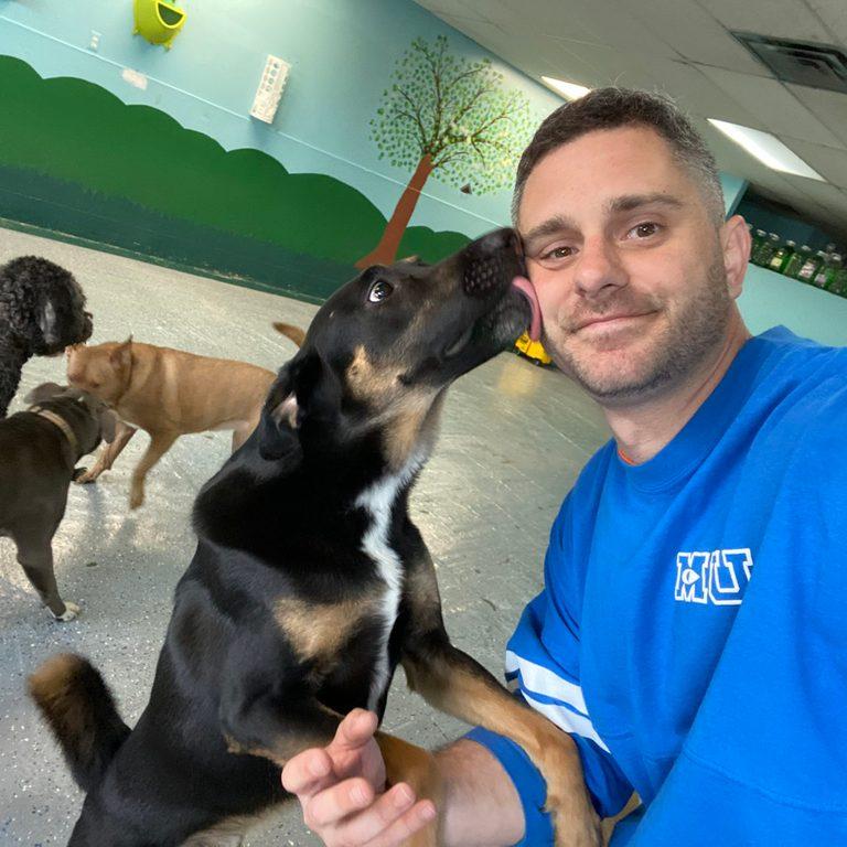 essential worker doggie daycare