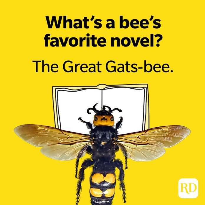 What's a bee's favorite novel? The Great Gats-Bee.