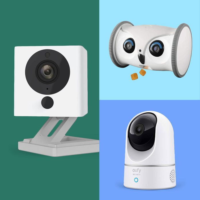 Grid of three cameras for watching pets at home