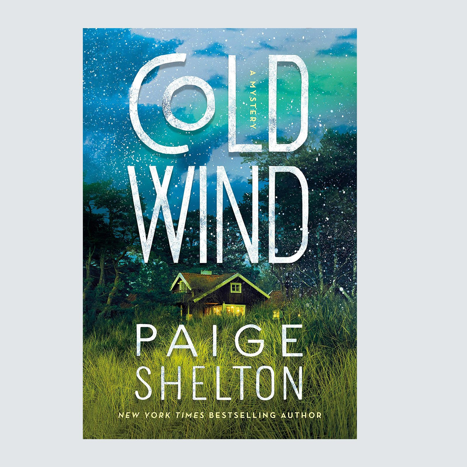 Cold Wind by Paige Shelton
