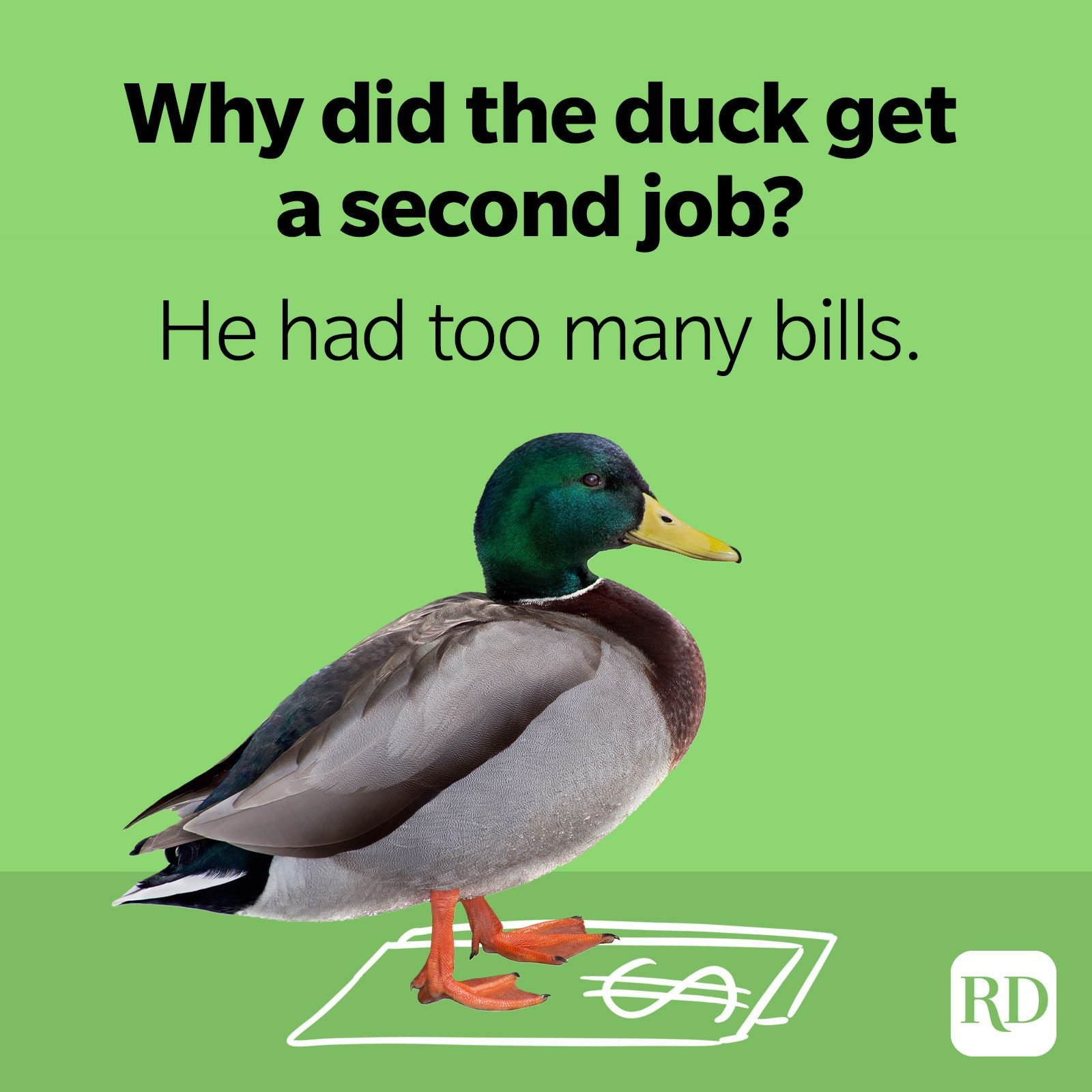 43. Why did the duck get a second job? He had too many bills.