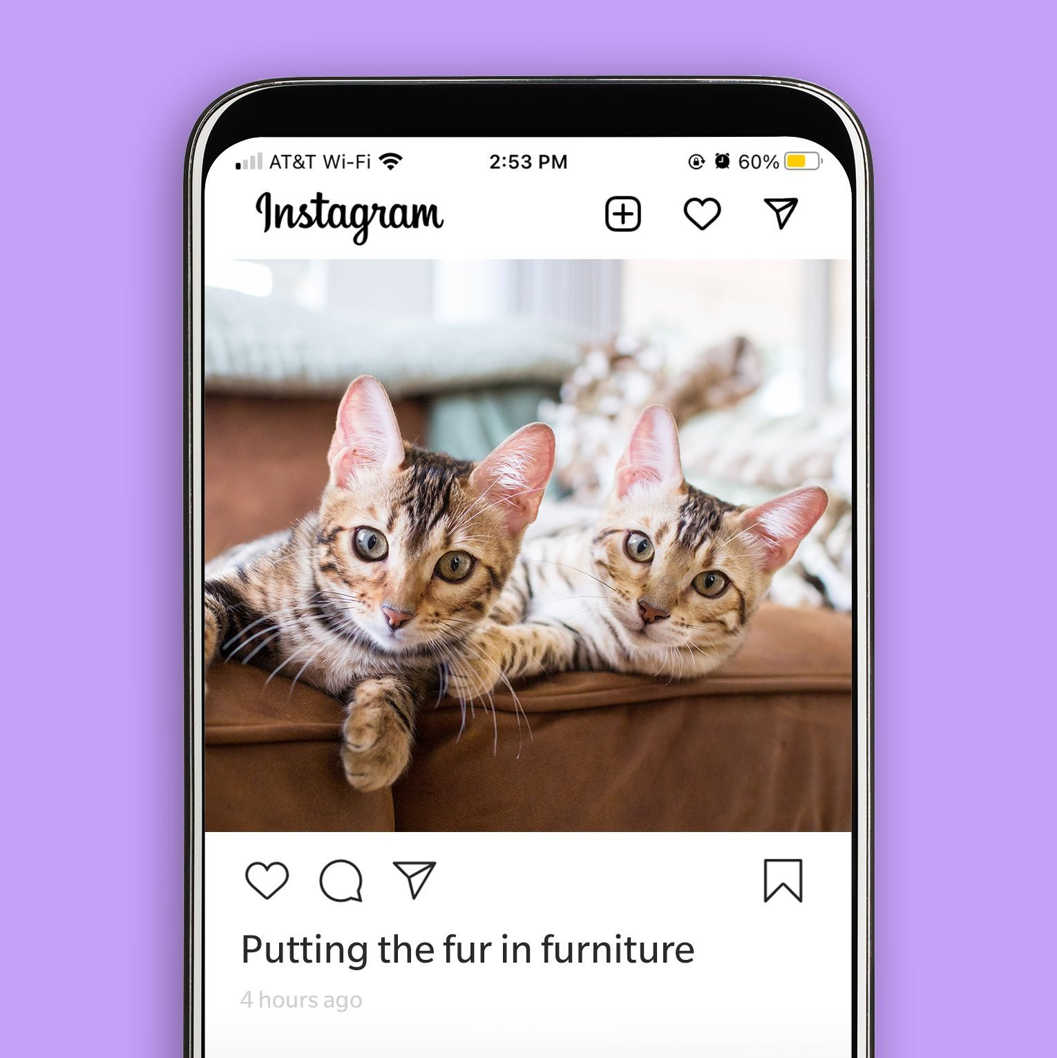 """Instagram post of two cats on a couch with the caption """"putting the fur in furniture."""""""