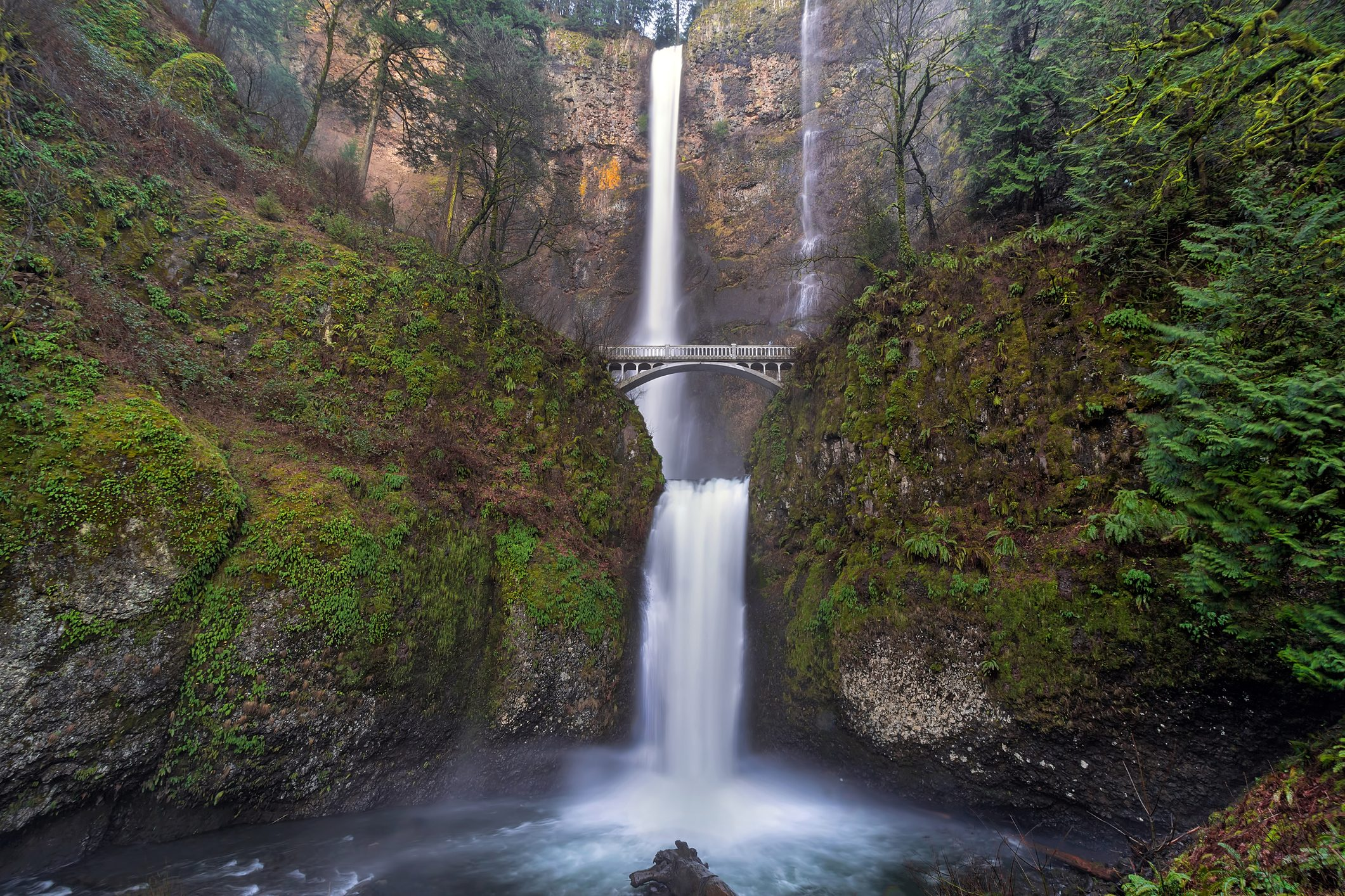 Multnomah Falls at Columbia River Gorge Oregon in Spring