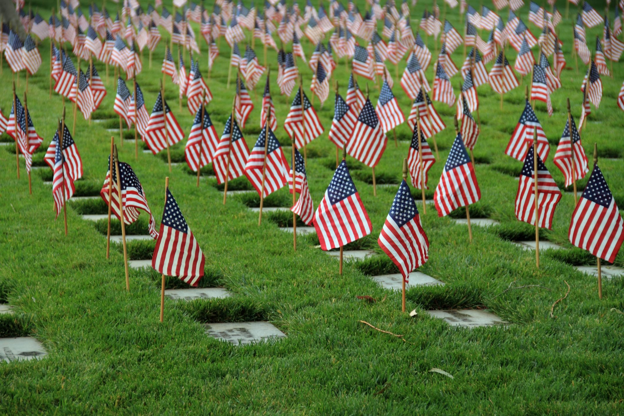 Flags grave markers Los Angeles memorial cemetery