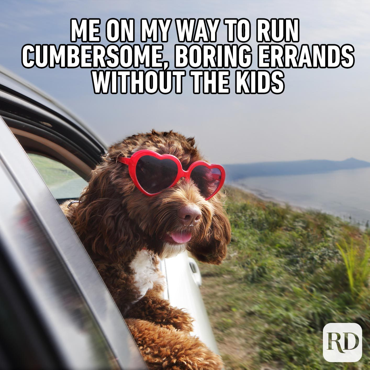 Dog sticking head out window. MEME TEXT: Me on my way to run cumbersome, boring errands without the kids
