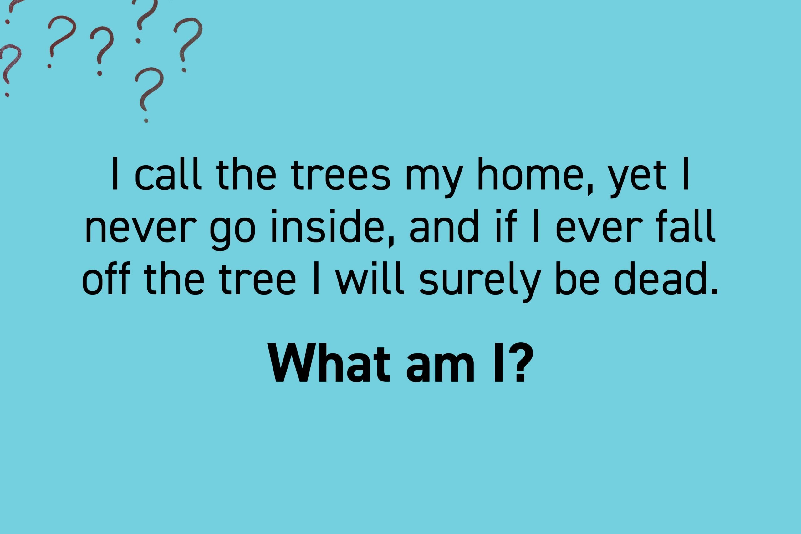 I call the trees my home, yet I never go inside, and if I ever fall off the tree I will surely be dead.
