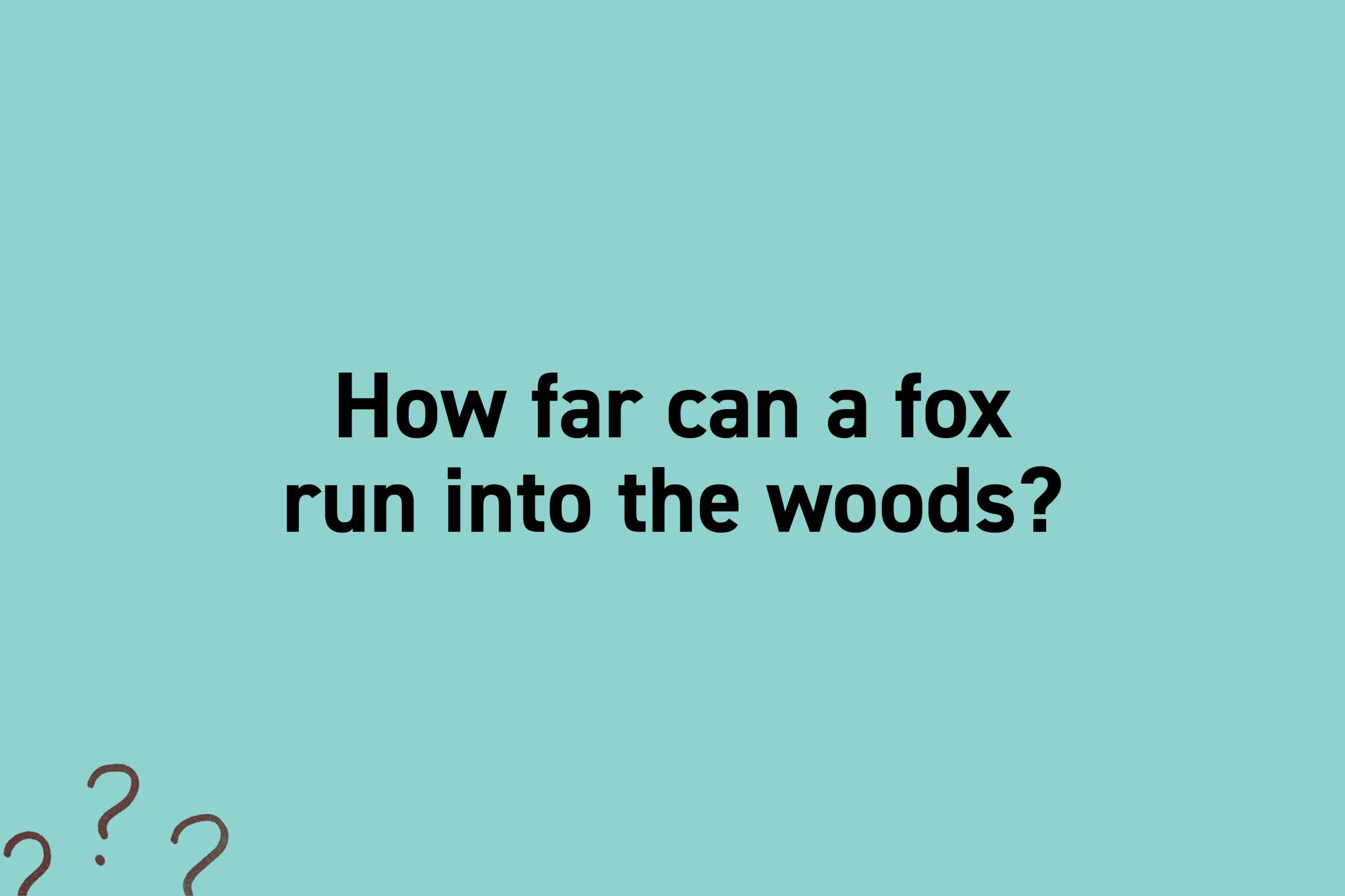 How far can a fox run into the woods?