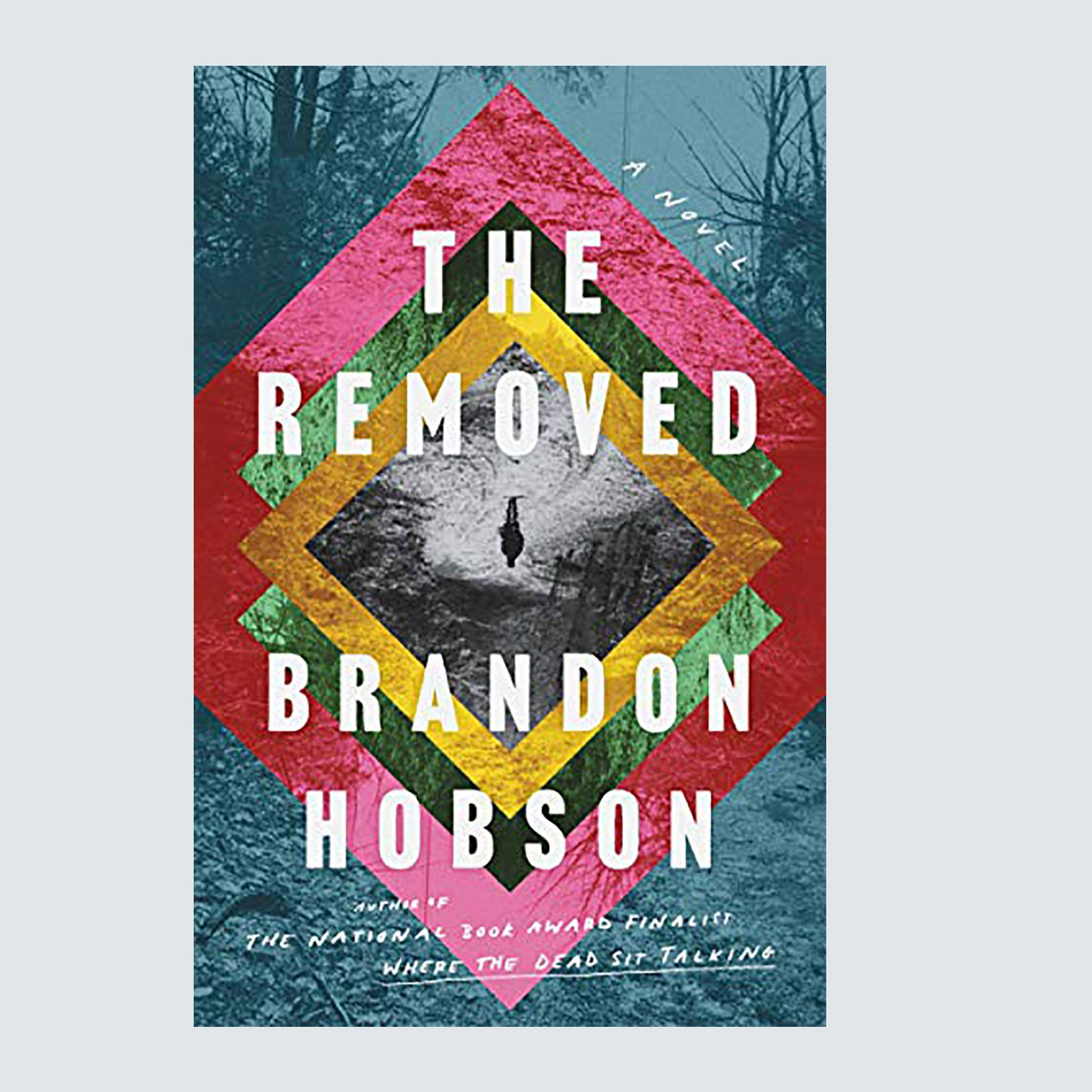 The Removed by Brandon Hobson