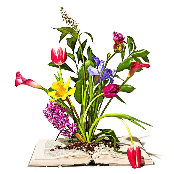 bouquet of flowers blooming out of the center of an open book