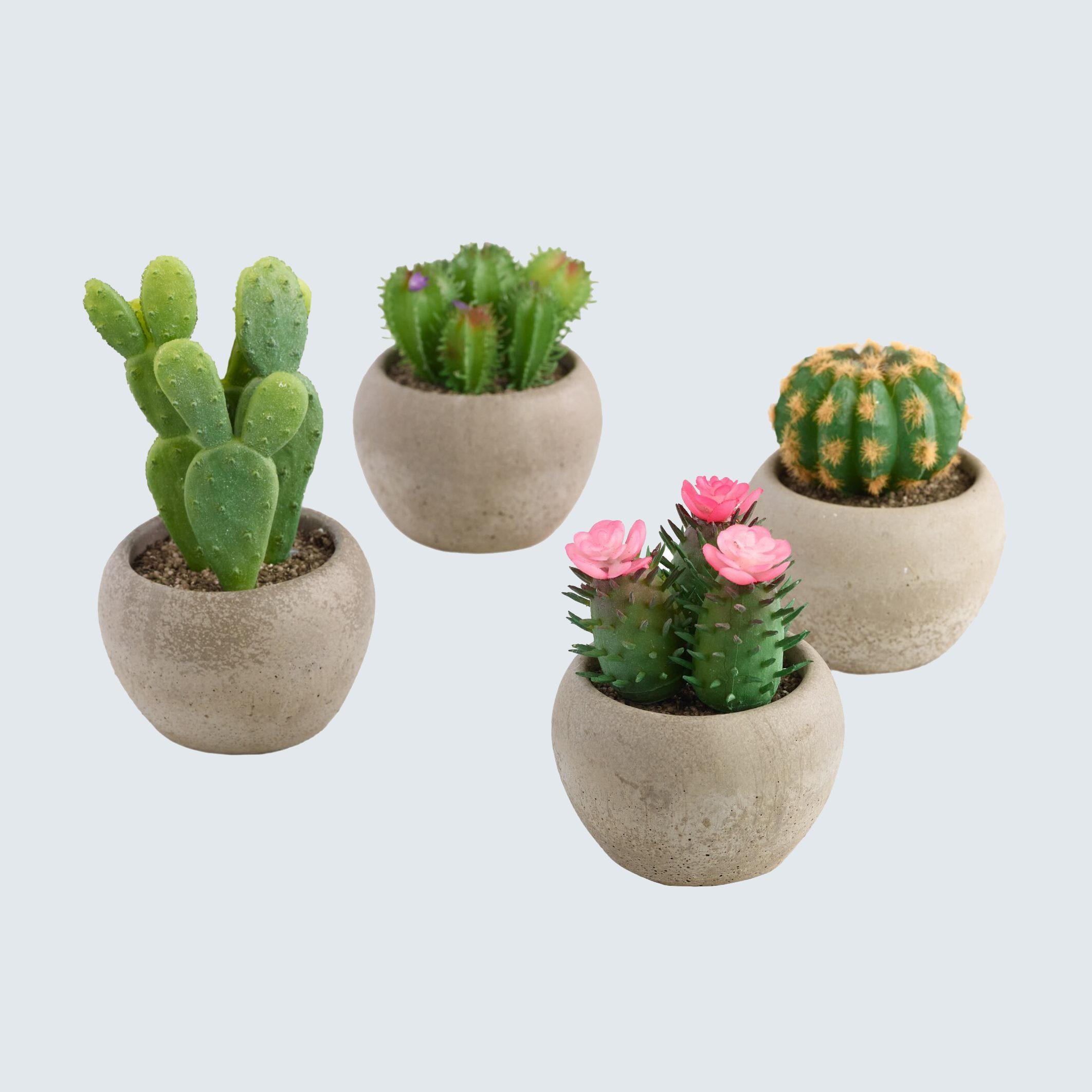 Assorted fake cacti