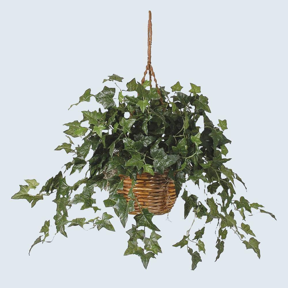 fake ivy plant