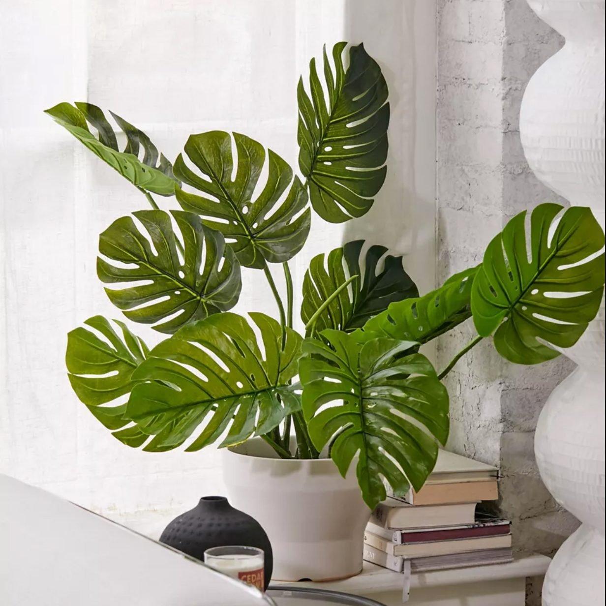 Fake monstera plant