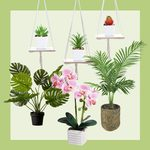 30 Best Artificial Plants You Can't Tell Are Fake (and Where to Buy Them)