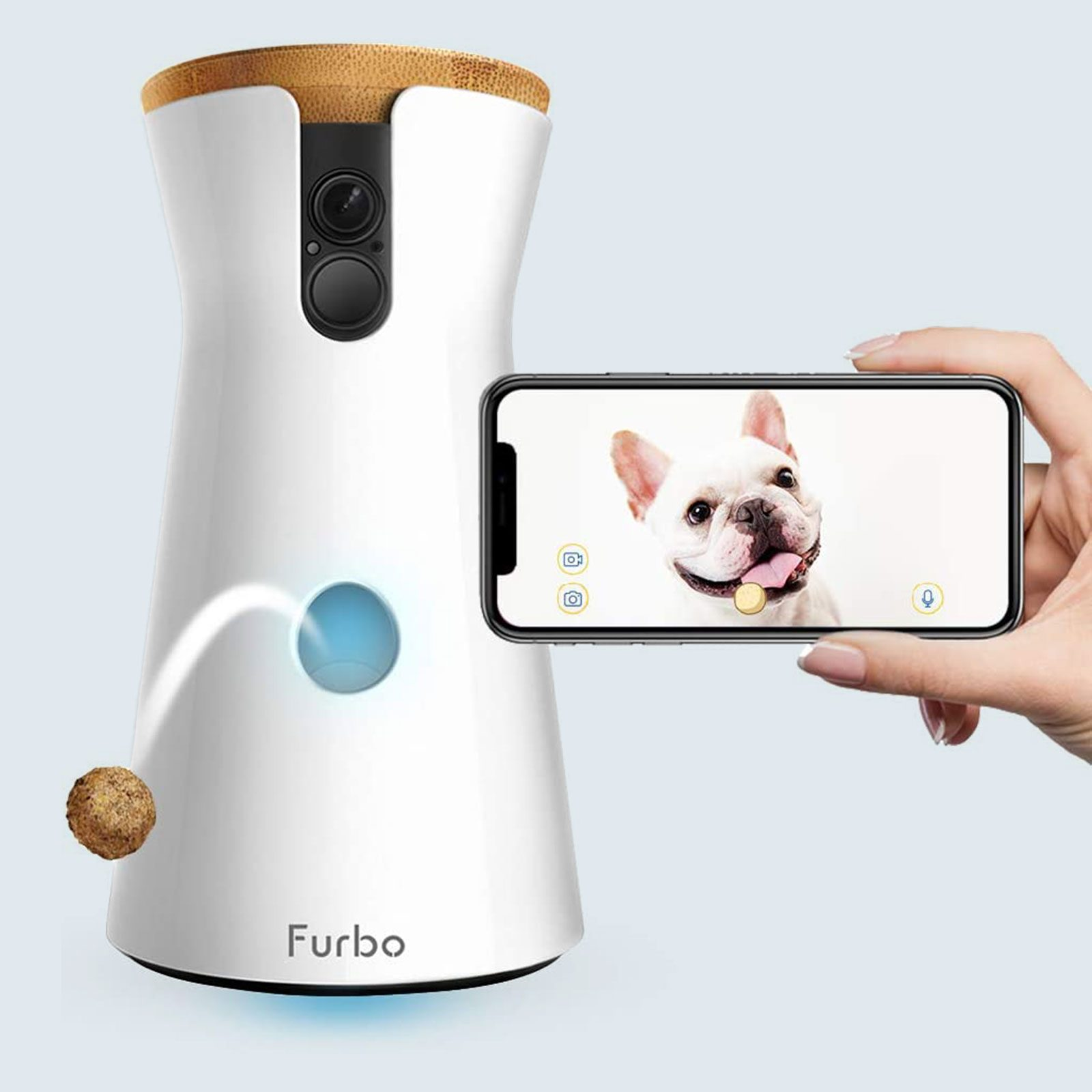 Best pet camera for dogs: Furbo