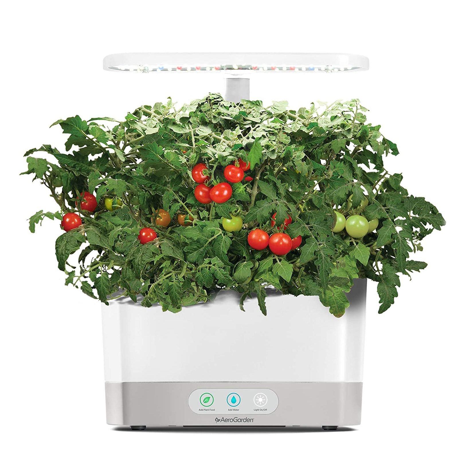 Harvest Indoor Hydroponic Garden from AeroGarden