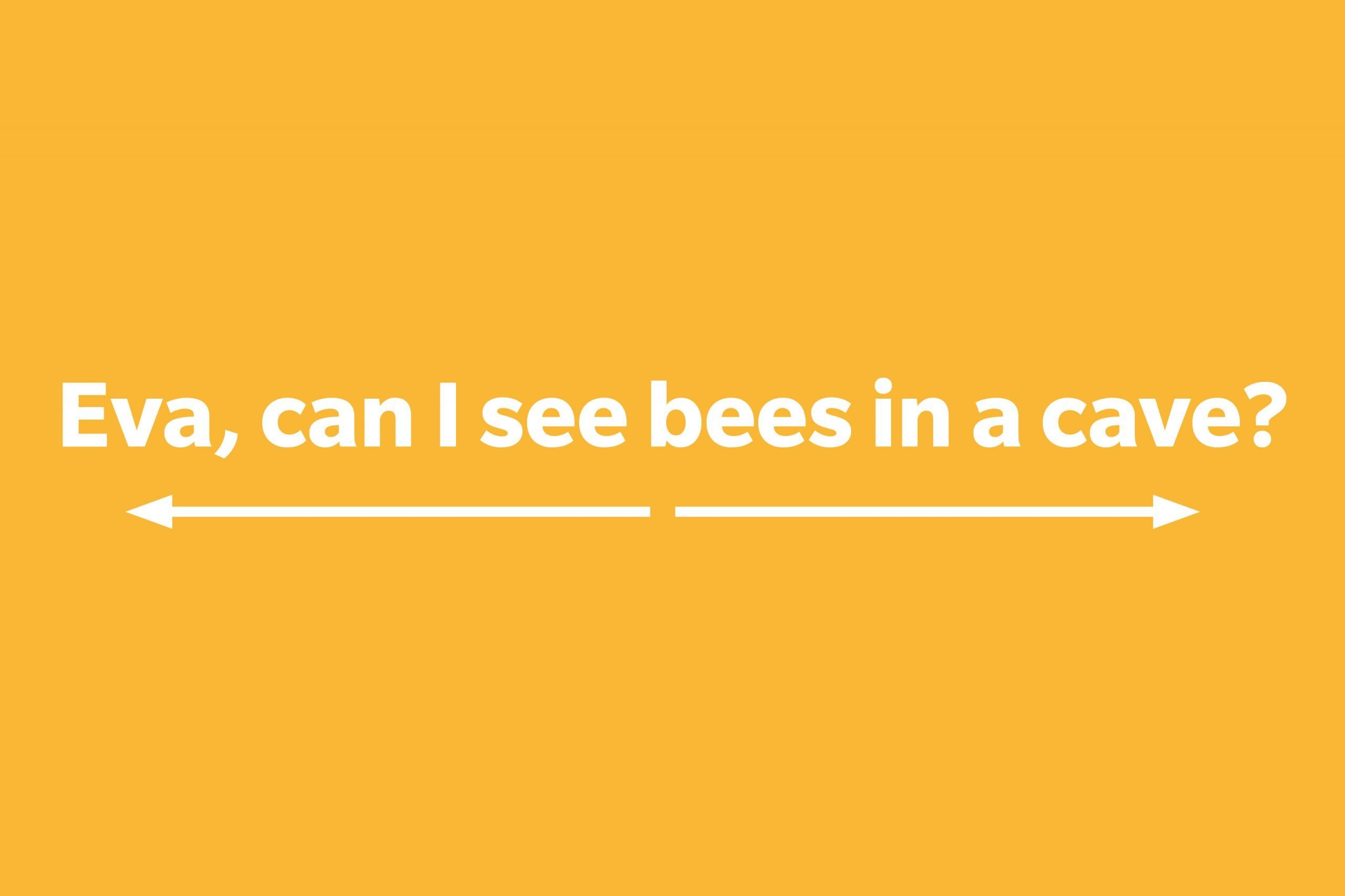 Eva, can I see bees in a cave?
