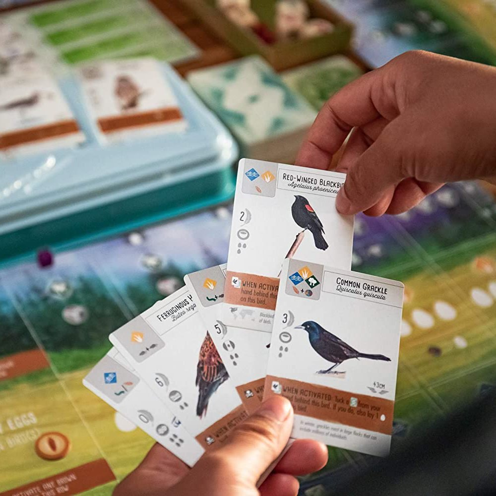 Wingspan board game