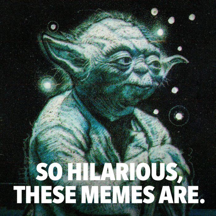 """Image of Yoda that says """"so hilarious, these memes are."""""""