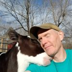 After This Man Rescued a Cow from a Dairy Farm, the Two Developed the Most Unbelievable Friendship