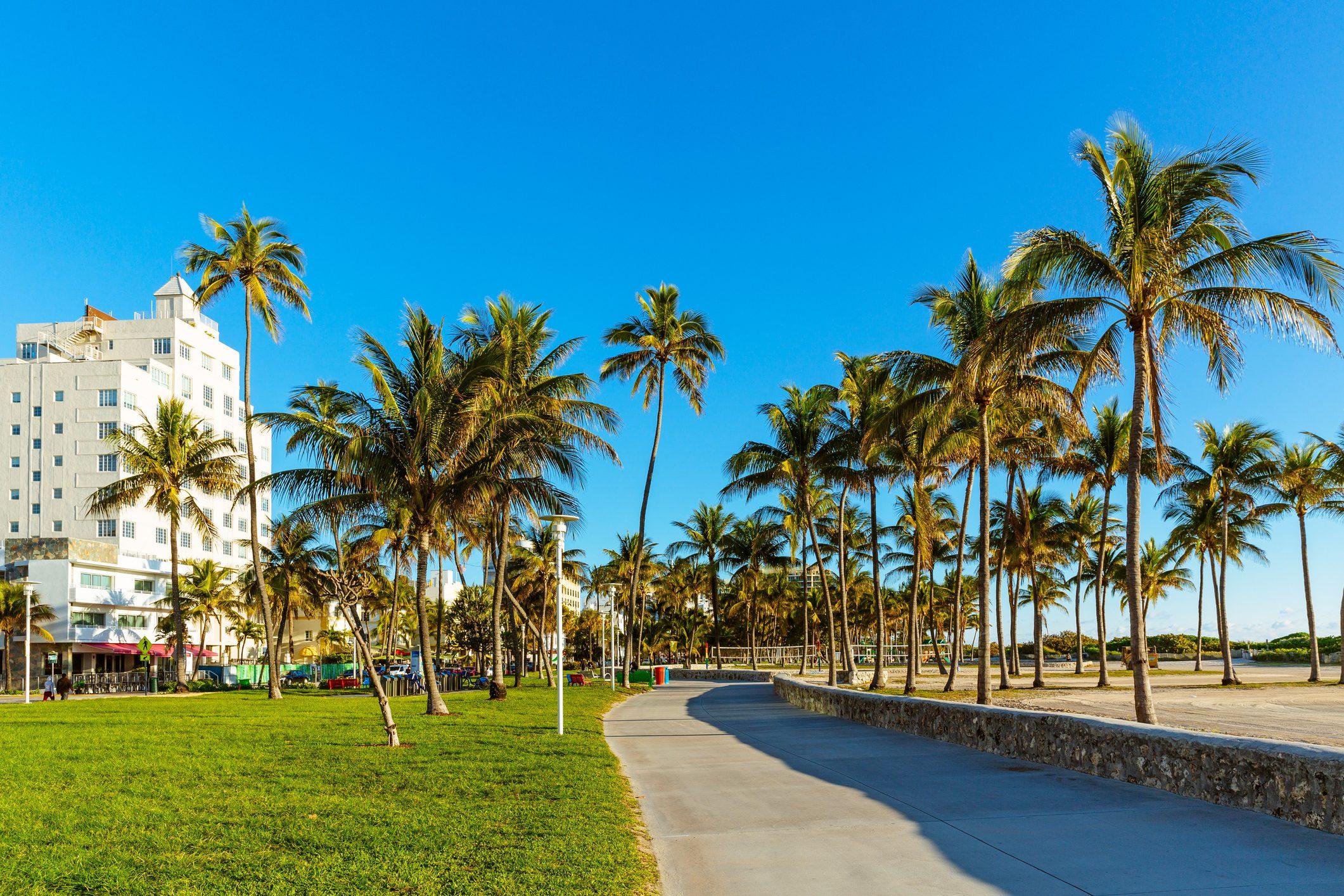 Lummus Park on a sunny morning with clear blue sky, South Beach, Miami, USA