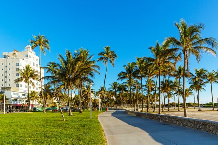 Lummus Park on a sunny morning with clear blue sky, South Beach, Miami, USA