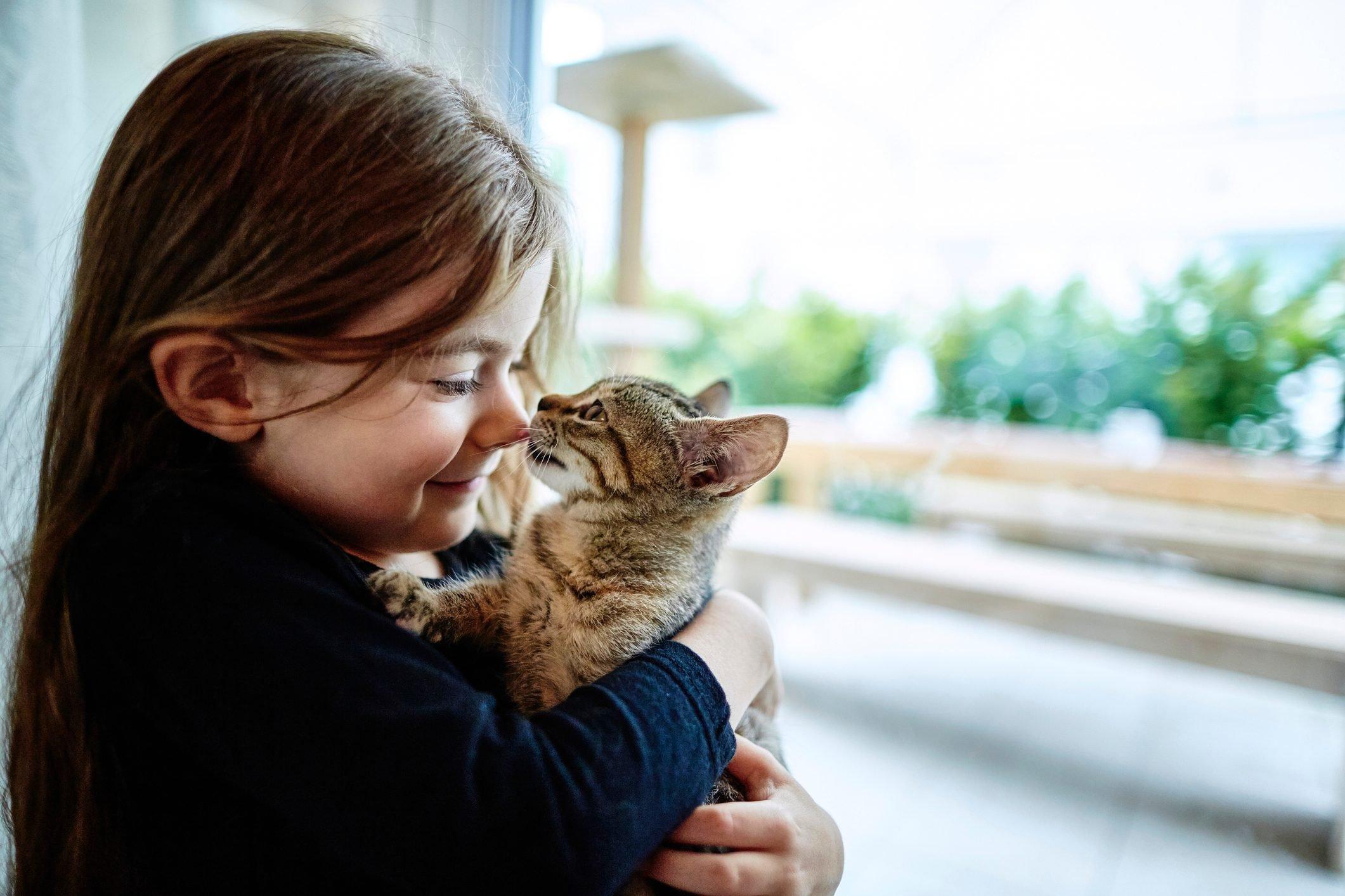 Cute girl holding kitten at the window