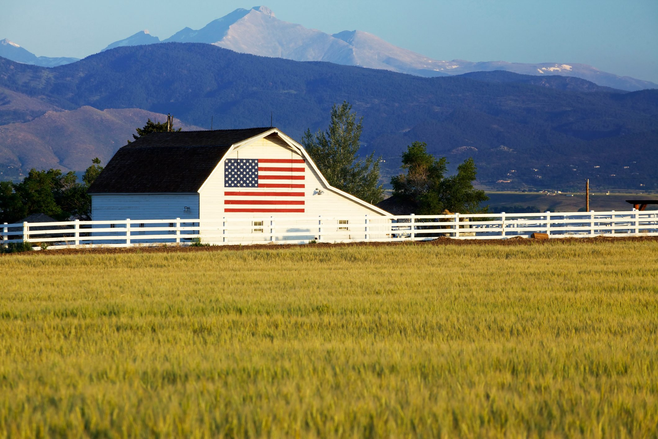 A landscape with a white barn with the American flag painted on the side standing in front of the Rocky Mountains of Colorado. Wheat field in foreground