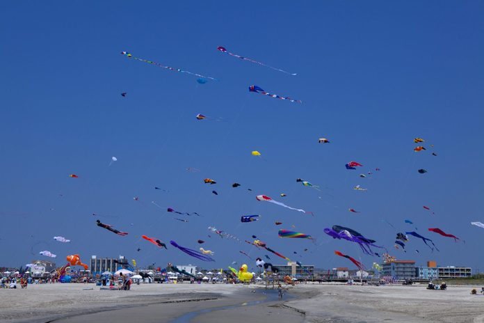 Kites in a clear blue sky