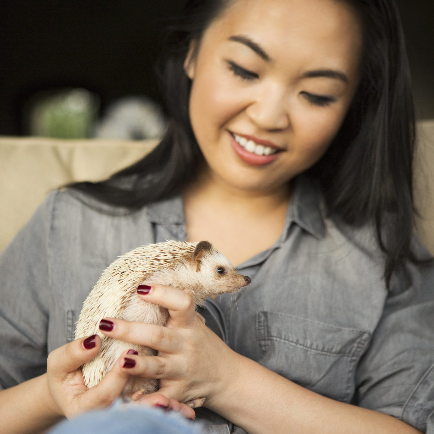 A Woman Holding A Hedgehog In Her Hands.