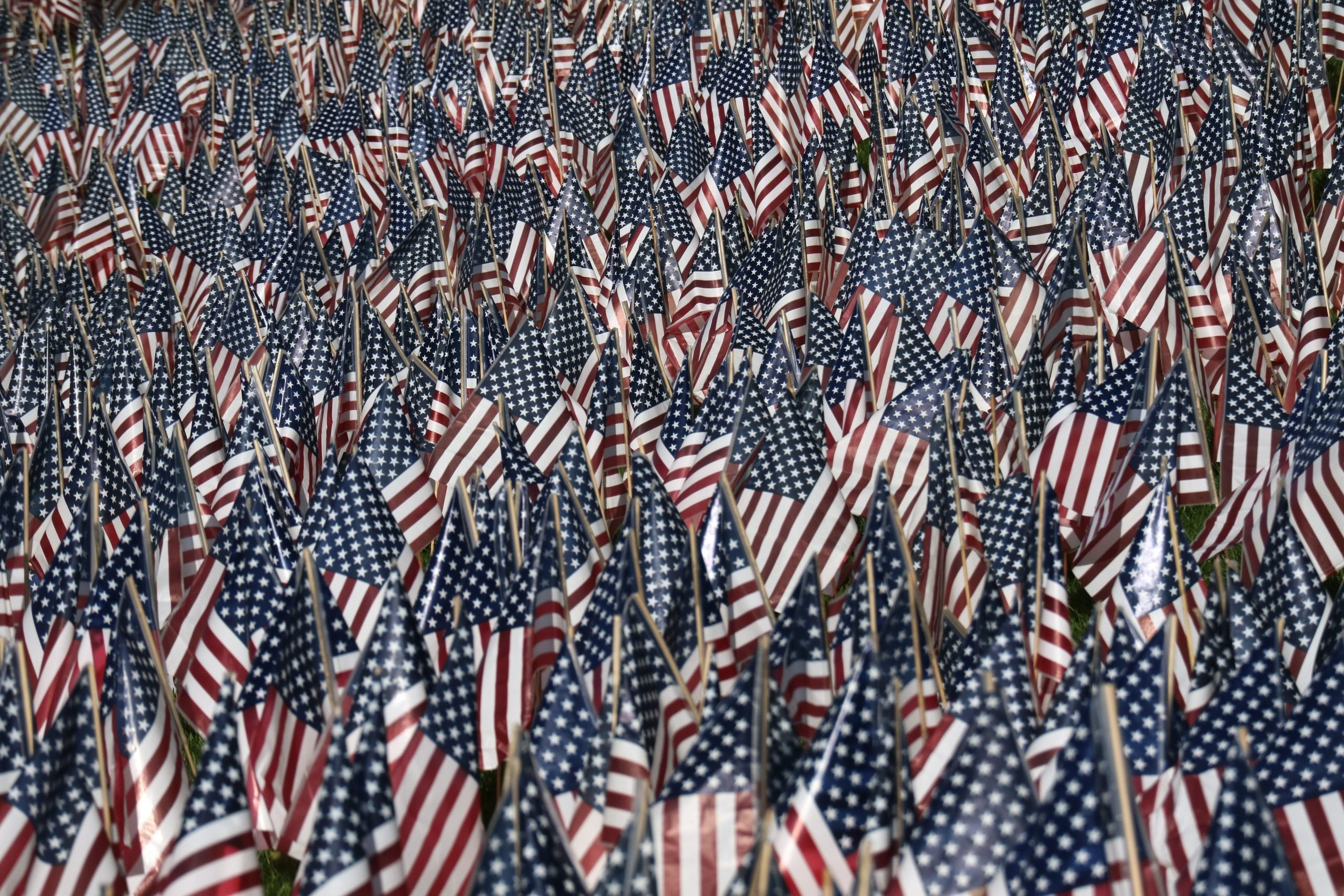 Thousands of US flags decorate the front lawn of the Fort Lee High School in advance of election day and Veterans Day on November 6, 2016 in Fort Lee, NJ.
