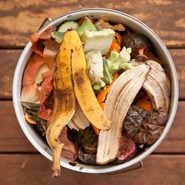 How to Make Compost at Home to Enrich Your Garden