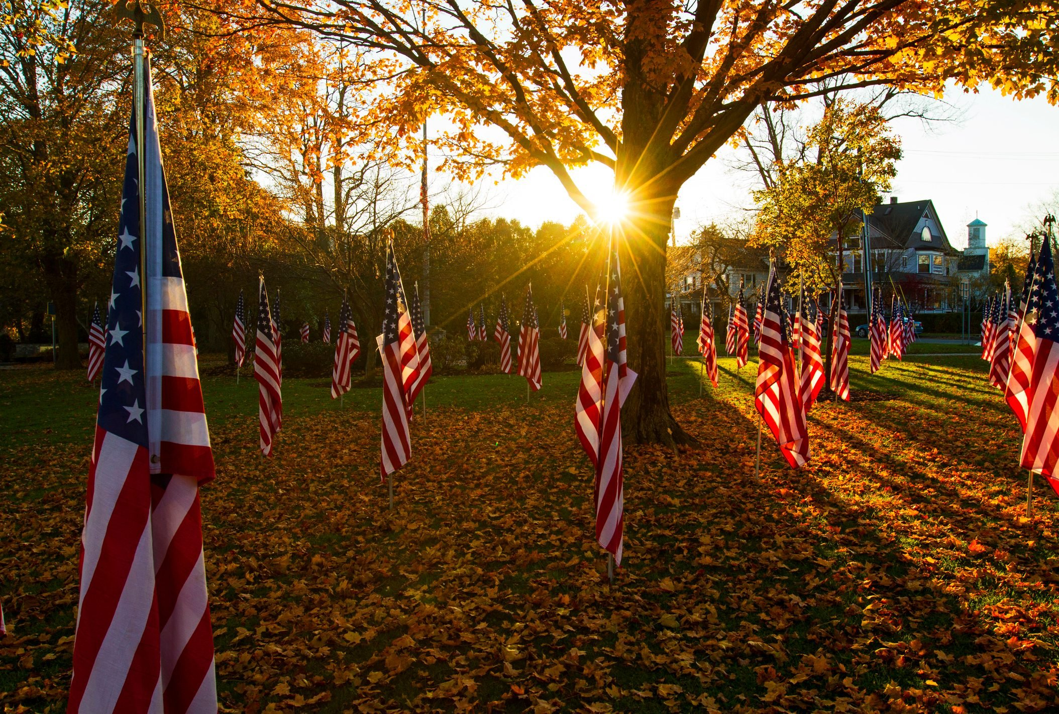 American flags sit in the autumn setting sun in a public park in a village in upstate New York