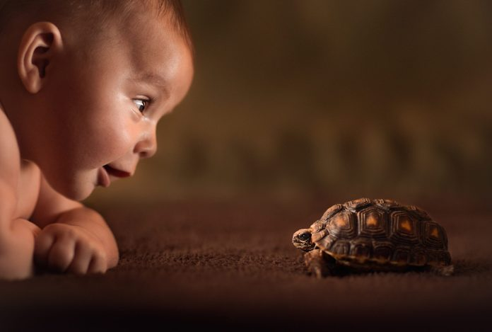 Baby and turtle