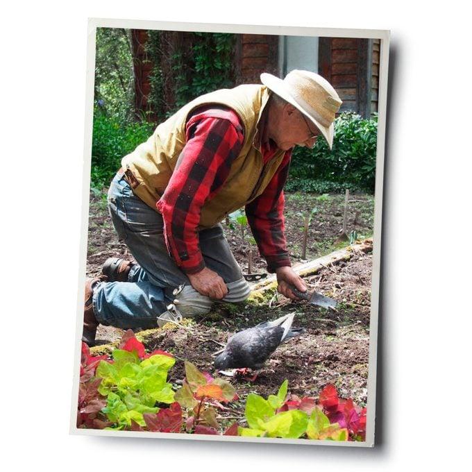 Jerry gardening