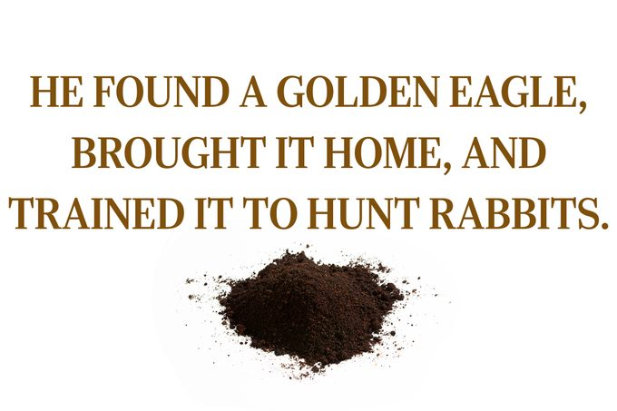 """Text: """"He found a golden eagle, brought it home, and trained to hunt rabbits."""""""