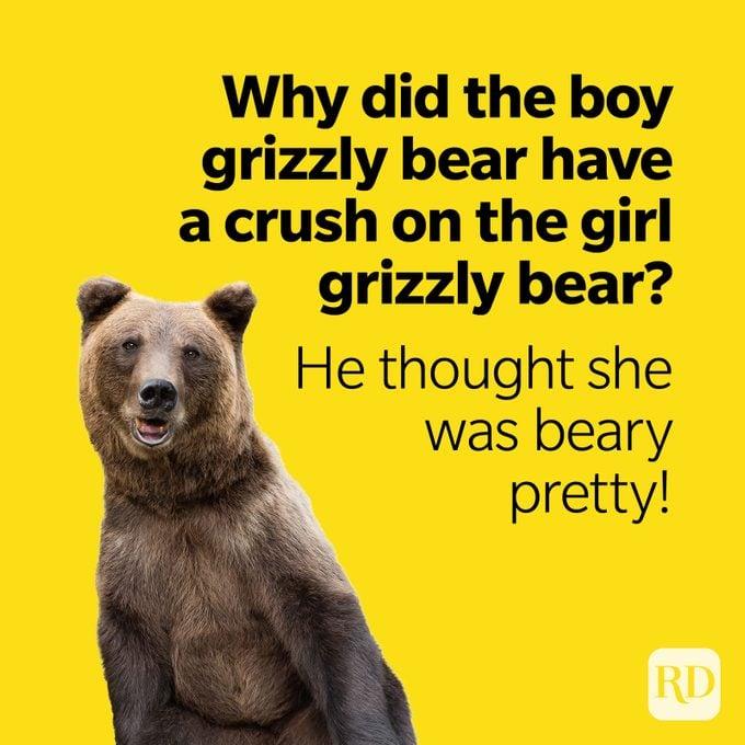 Bear Puns Beary Pretty