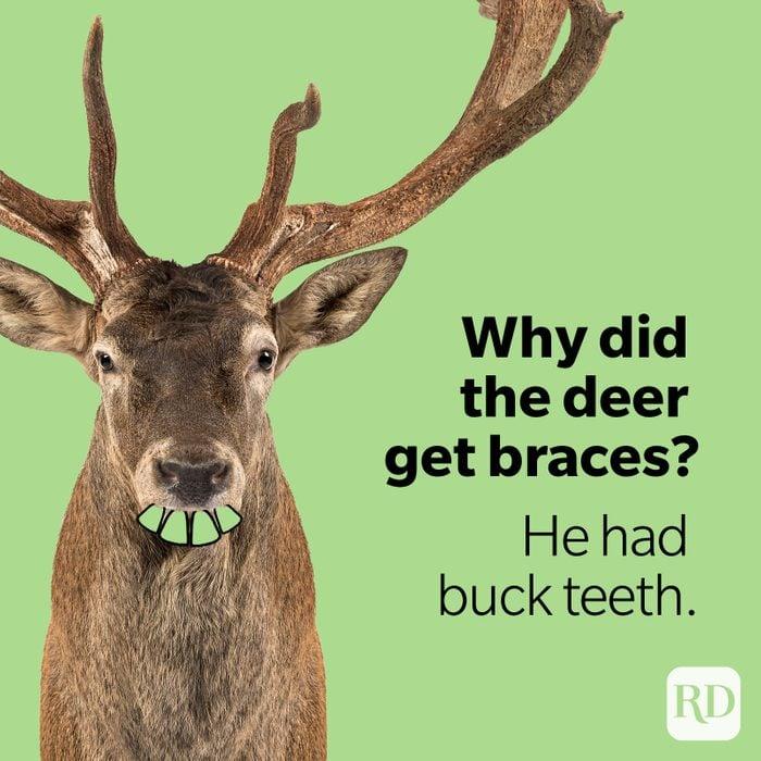 Deer with dramatized teeth