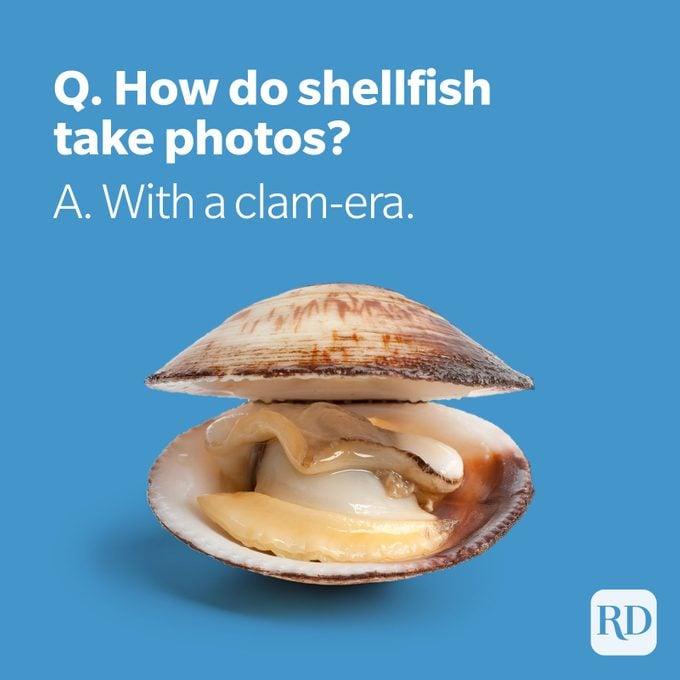 Clam with clam-era pun