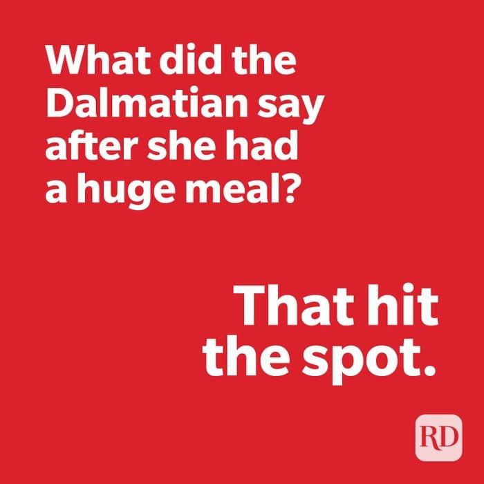 Dalmatian joke on red