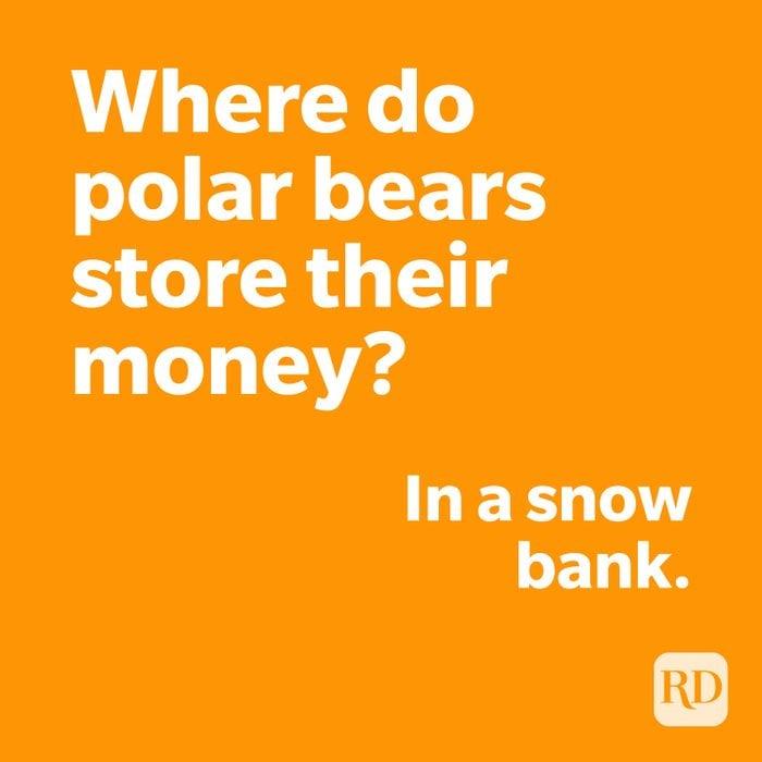 Polar bear joke on orange