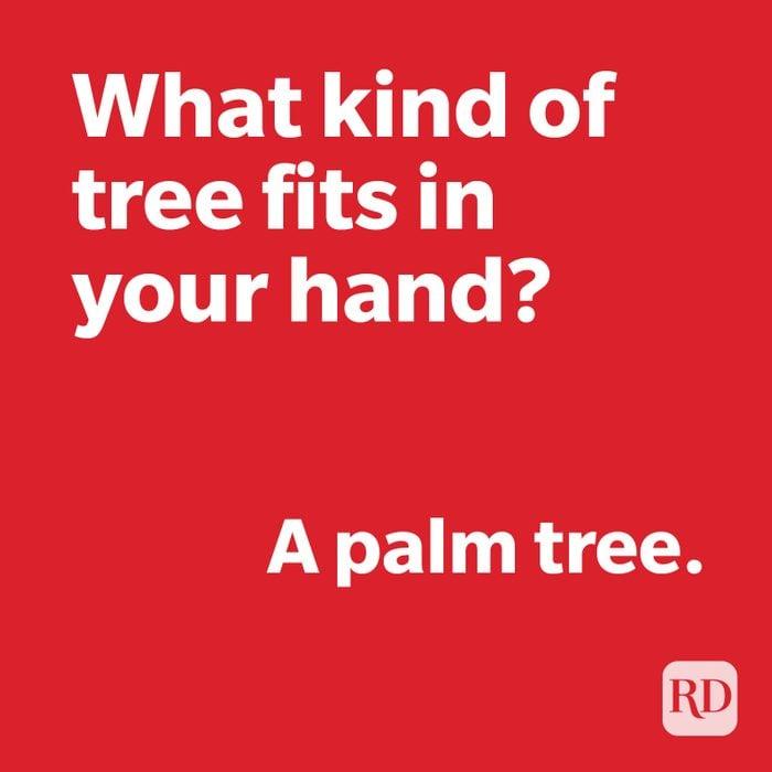 Tree joke