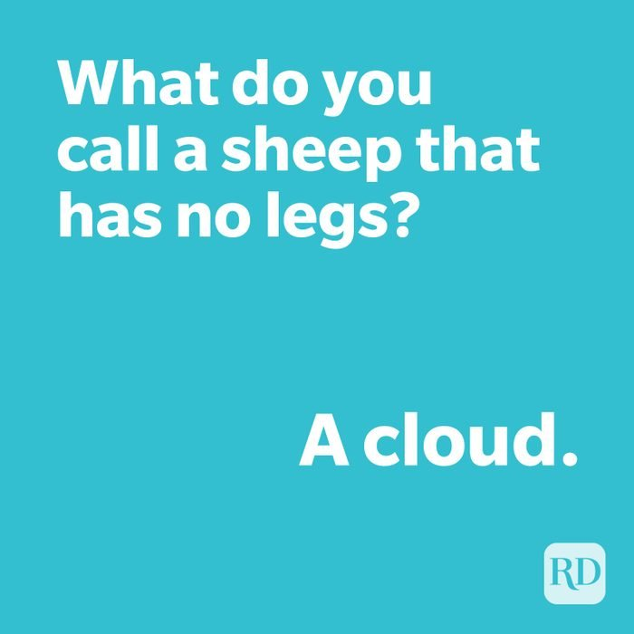 Sheep joke