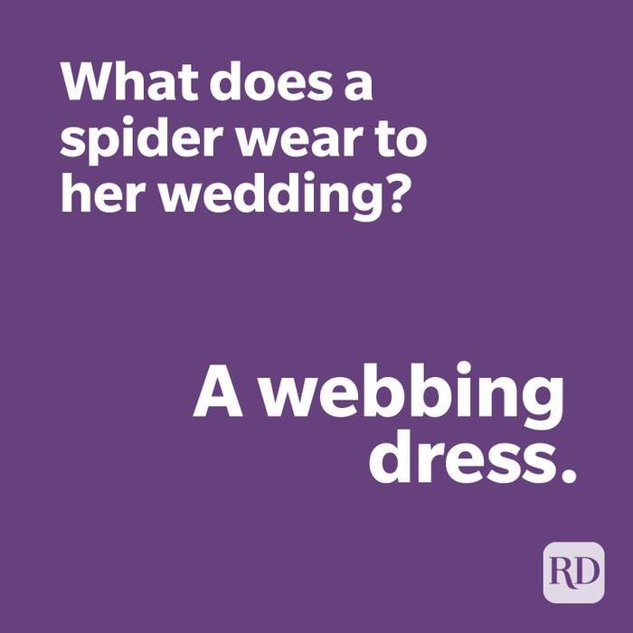 Spider joke